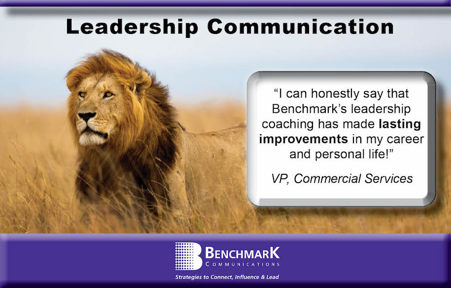 Leadership Lion